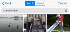 چگونه در WhatsApp فایل GIF جستجو و ارسال کنیم؟