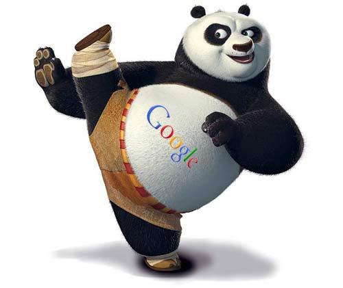 Google Panda: پنج نکته ای که می بایست بدانید