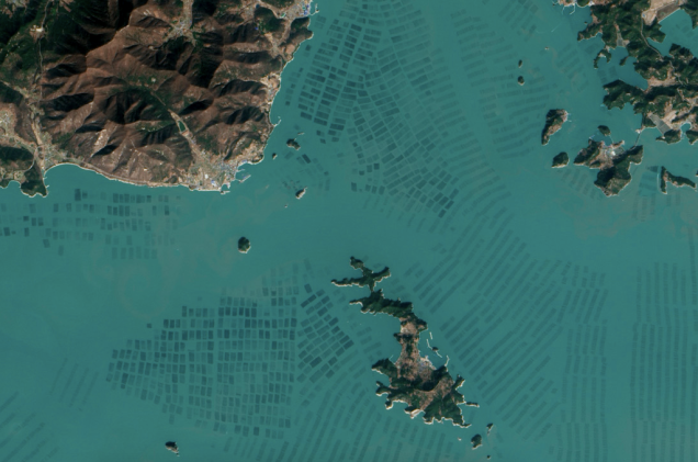 تصاویر ماهواره ای ناسا از مزارع جلبک دریایی در کره جنوبی