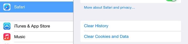 12-clear-safari-data