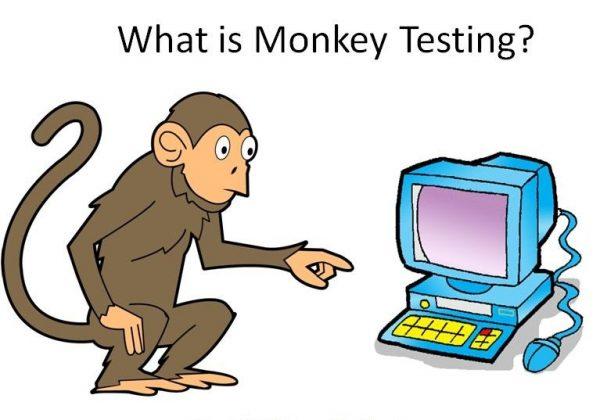 آزمایش میمون
