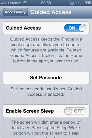 iPhone_Accessibility_08