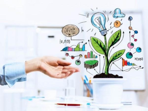 چگونه یک فعالیت تجاری موفق را شروع کنیم؟