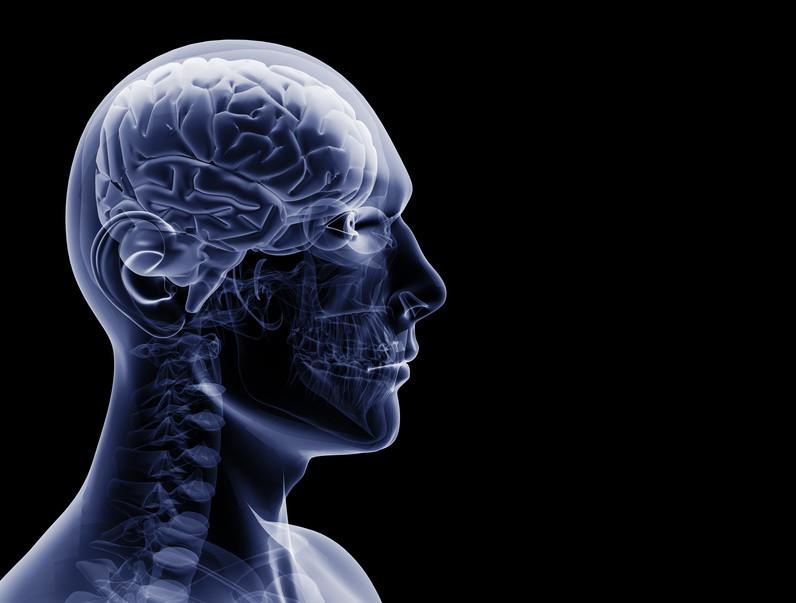 نقشه برداری جدید مغز انواع سلول های ناشناخته را نشان می دهد