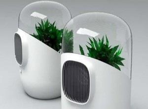 گیاهان فضایی