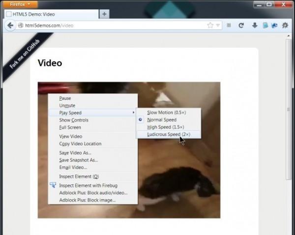 Firefox22_06