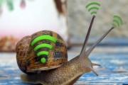 ۴ علت و راه حل برای کند شدن سرعت وای فای