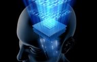 حافظه ی مصنوعی در مغز کاشته می شود