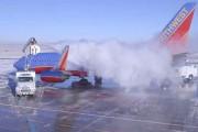وقتی قورباغهها فرآیند یخ زدایی از هواپیما را به انسانها یاد میدهند!