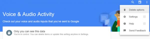Delete-Google-Voice-activity