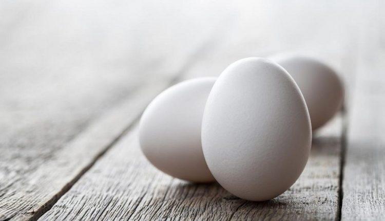 تولید انرژی پاک از پوست تخممرغ