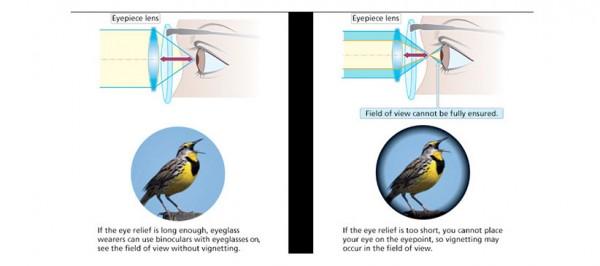 Visual comfort parameters in binoculars