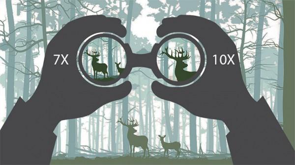 Parameter field of view in binoculars