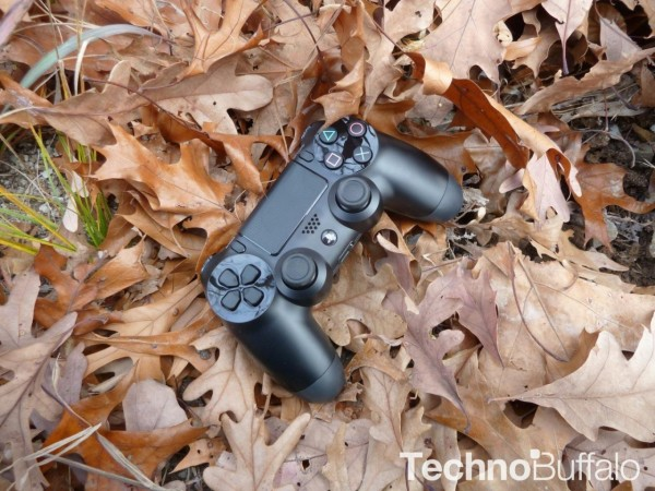 PlayStation-4-in-the-woods-14-1280x960