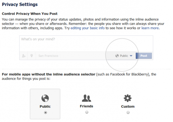 Privacy settings for mobile apps without the inline audience selector