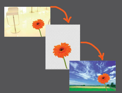 دور بری (جداکردن) یک گل توسط کانالها در فتوشاپ