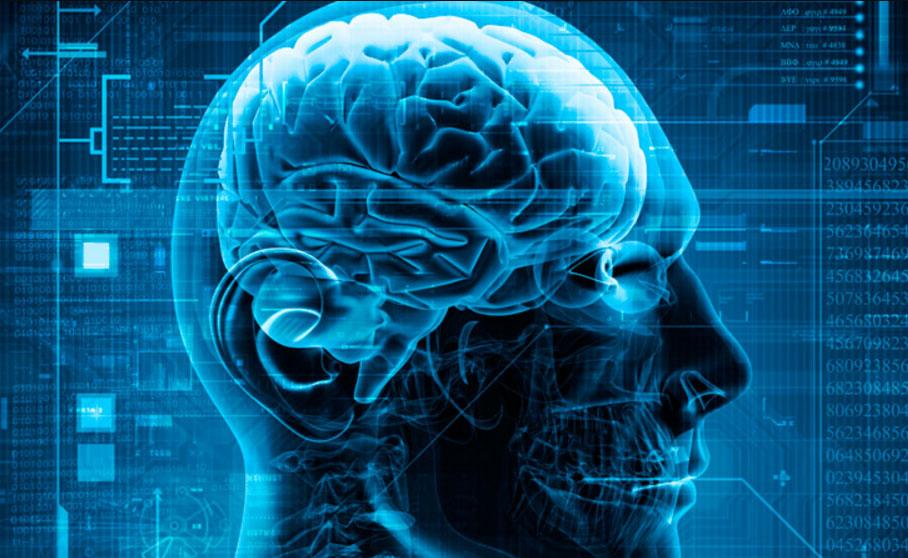 پیش بینی آینده توسط مغز