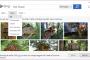 همکاری تیم bing و آفیس برای ادغام جستجوی آنلاین تصاویر در office package