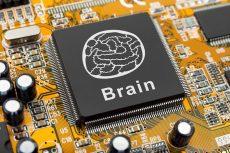 کاشت مغز در کامپیوتر