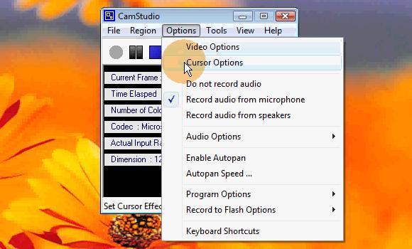 camstudio_cursor