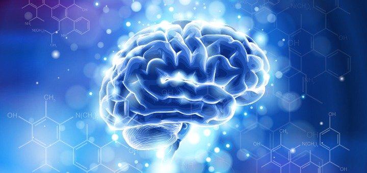 منبع جدید رشد مغزی کشف شد