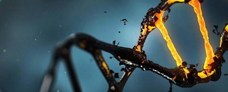 با DNA تاریک آشنا شوید؛ ژنی مخفی که می تواند تصورات ما در مورد تکامل را تغییر دهد