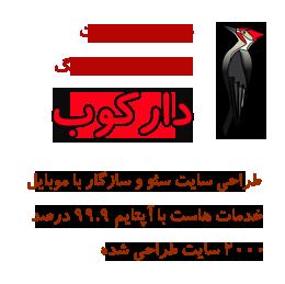 طراحی سایت ارزان دارکوب