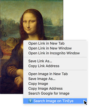 Search Image on TinEye