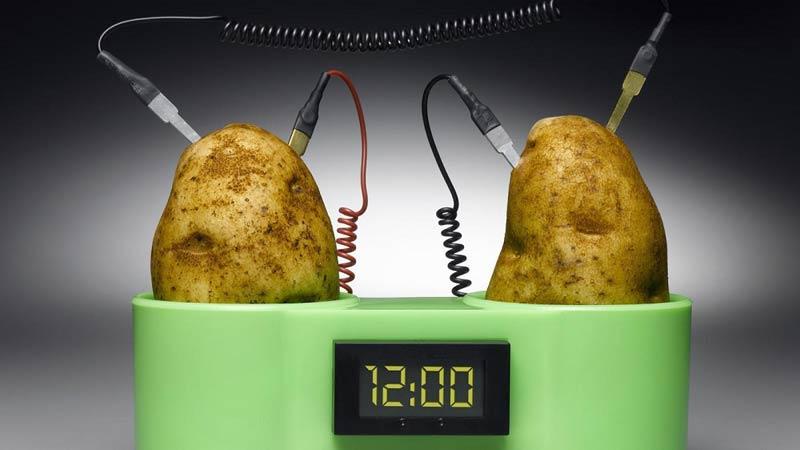 تولید غذا از طریق الکتریسیته