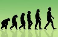 حل معمای شگفت انگیز پیدایش حیات؛ آیا انسان از یک باکتری به وجود آمده است؟