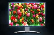 ۴ افسانه در مورد مانیتور های LCD که حقیقت ندارند