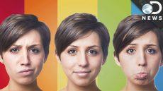تاثیر رنگ ها بر مغز و بدن