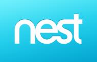 کارکنان NEST از امروز با گوگل پروژه مشترک اغاز می کنند