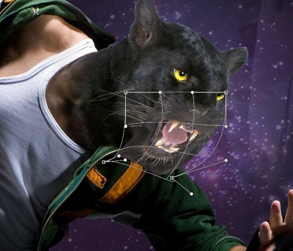 panther13b