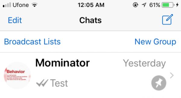 pinned chat whatsapp 600x325 - آموزش PIN کردن یک رشته پیام در واتس اپ