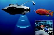 سهولت جاسوسی نظامی دریایی با الگو گیری از ربات PowerRay