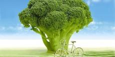 فناوری تغییر ژنتیک گیاهان
