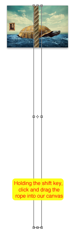 step-007b