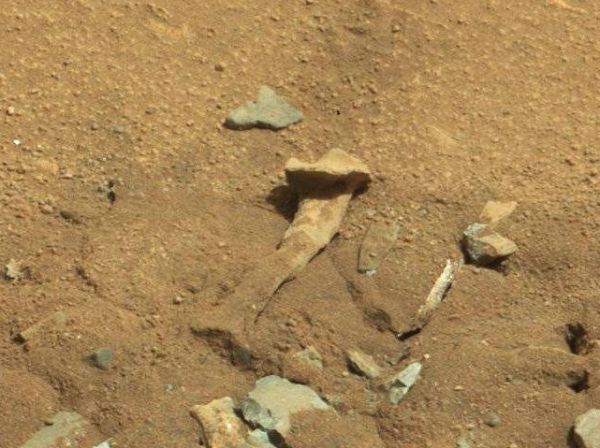 theories-of-possible-martian-thigh-bone-debunked-by-nasa-scientists