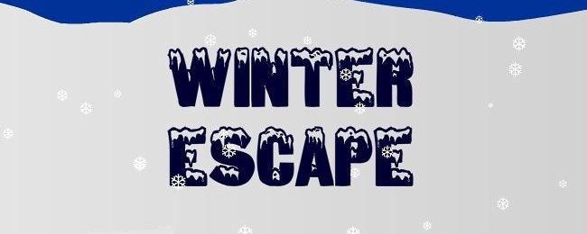 سرگرمی روز جمعه : فرار زمستانی