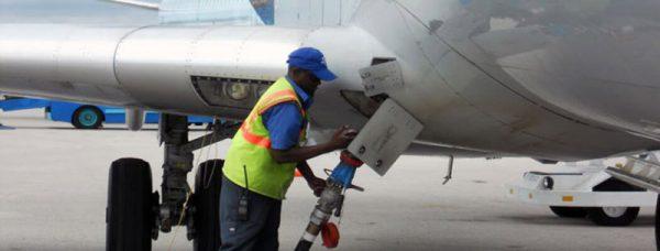 23511 849a5a 1 1 600x228 - بومیسازی ضدیخ هواپیما با الهام از رفتار سوسک صحرایی