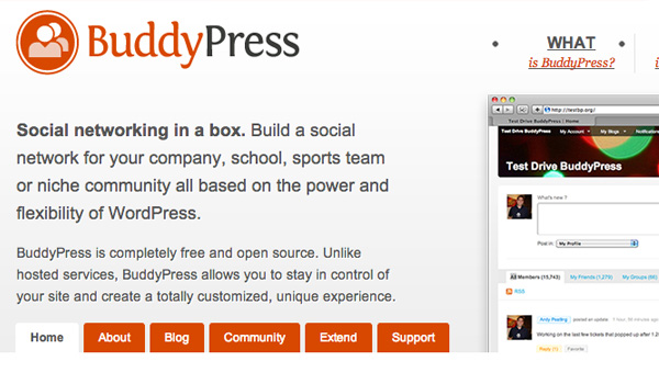 Old Bbuddypress Website Layout-2009