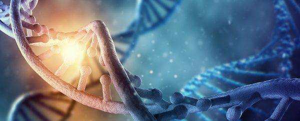 تجربیات کودکی قادر به تغییر DNA تا آخر عمر هستند
