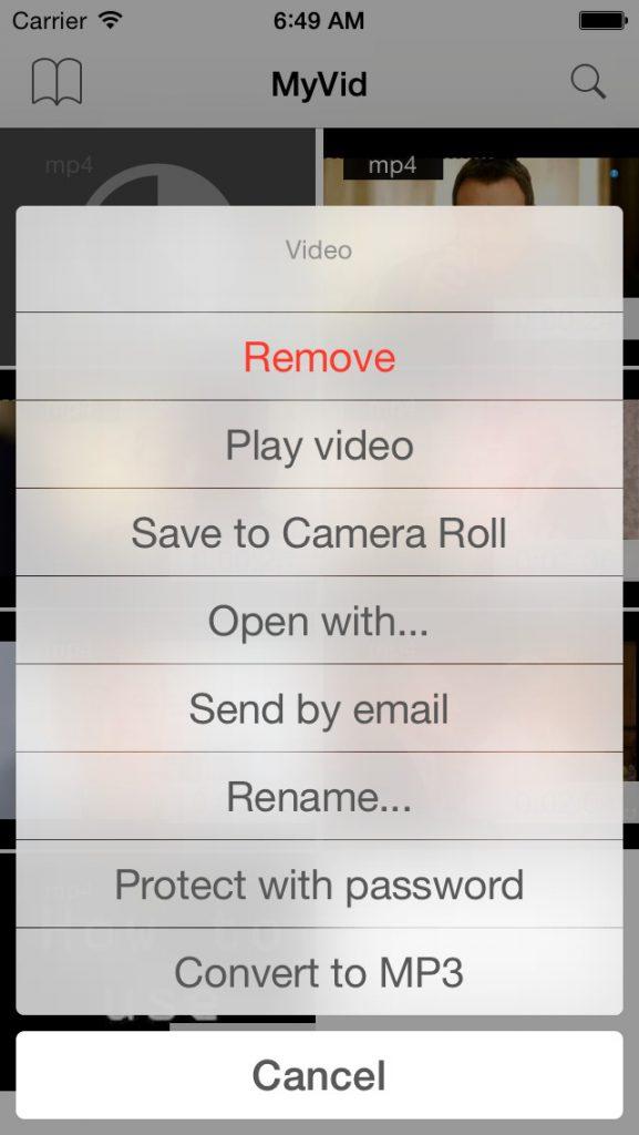 MyVid Video Downloader