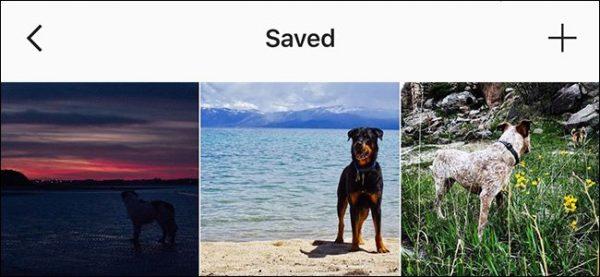چگونه پست های Instagram را بوک مارک کنیم؟